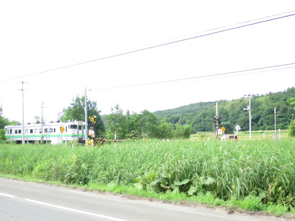 北海道つー 217