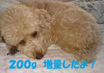 -9DSC_0065.jpg
