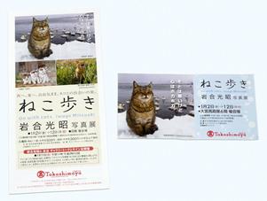 岩合光昭 写真展「ねこ歩き」(大宮高島屋)