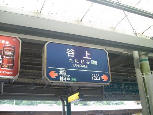 tanigami.jpg