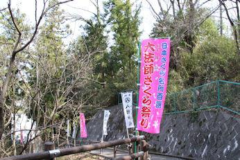 3/31    大法師桜まつり 公園への道 階段
