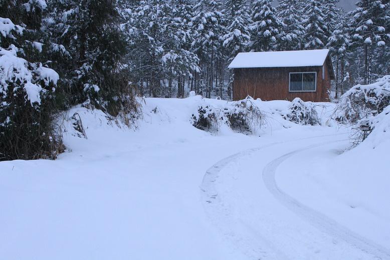 雪に閉ざされる