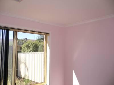壁のピンク