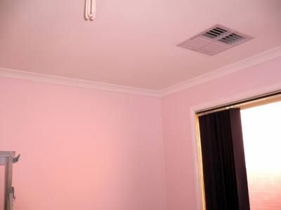ピンクの壁 完成