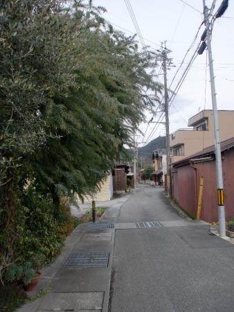 2014-12-21_15.jpg