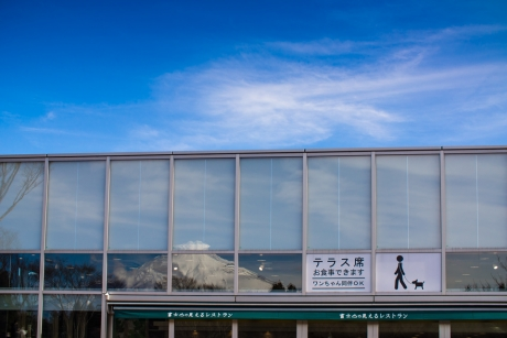 fuji_restaurant.jpg