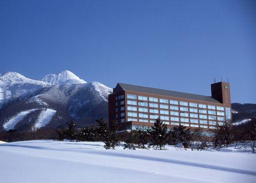 ホテル冬全景山入り(大)