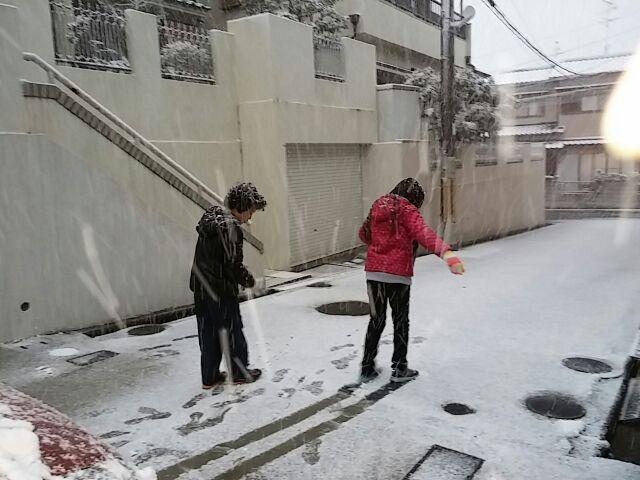 元旦の雪 2015年1月1日