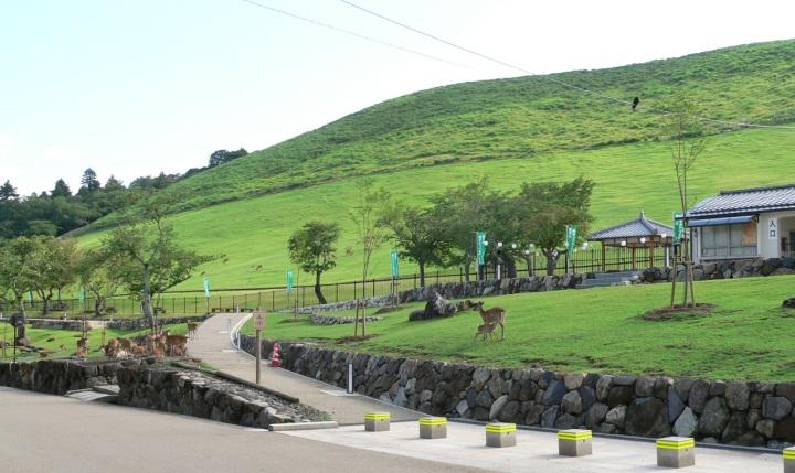 奈良・若草山 (3)