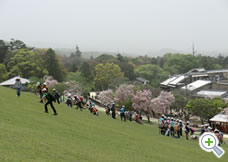 奈良・若草山②