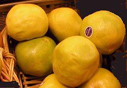 グレープフルーツ (2)