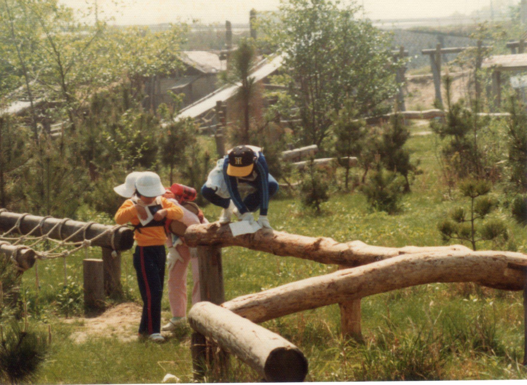 生駒山麓フィールドアスレティック②・1981年5月479