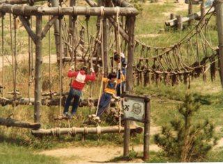 生駒山麓フィールドアスレティック③・1981年5月480
