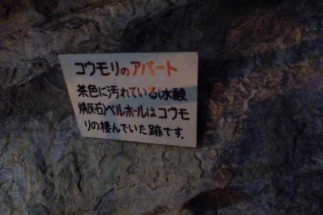 s-Aくん (13)