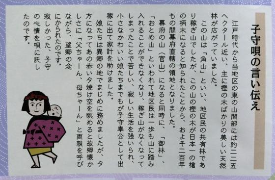 s-innzi (3)