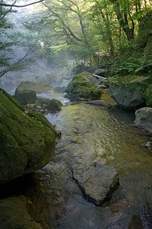300px-Ryokukeitouen_Kirishima_City_Kagoshima_Pref01n4592.jpg