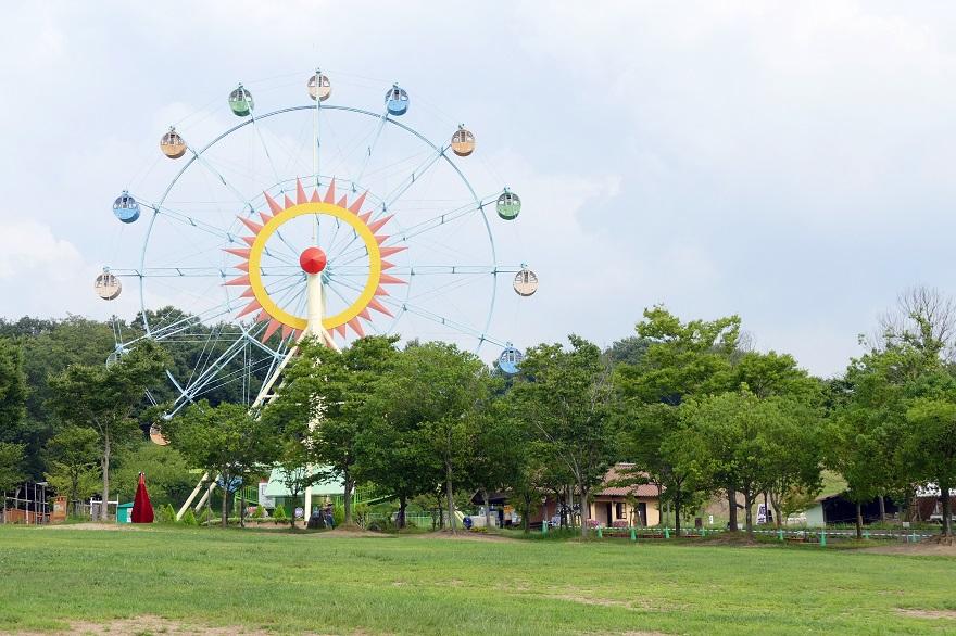 堺・緑のミュージアム (1)