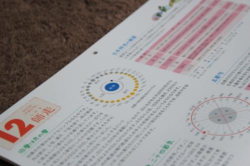 海の精カレンダー6