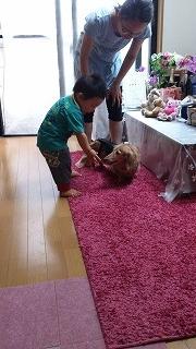 犬と戯れる