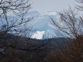 森から垣間見えた泉ヶ岳