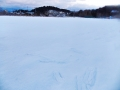 追廻の雪原