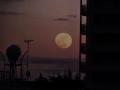 ほぼ満月(明日)