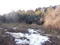 少なくなった藪の雪