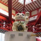 大須招き猫