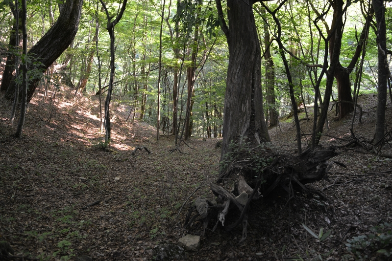 岩間神社-4