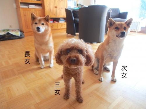 3姉妹です