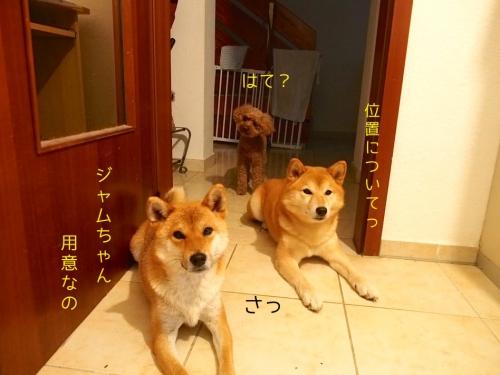 腹ペコ3姉妹4