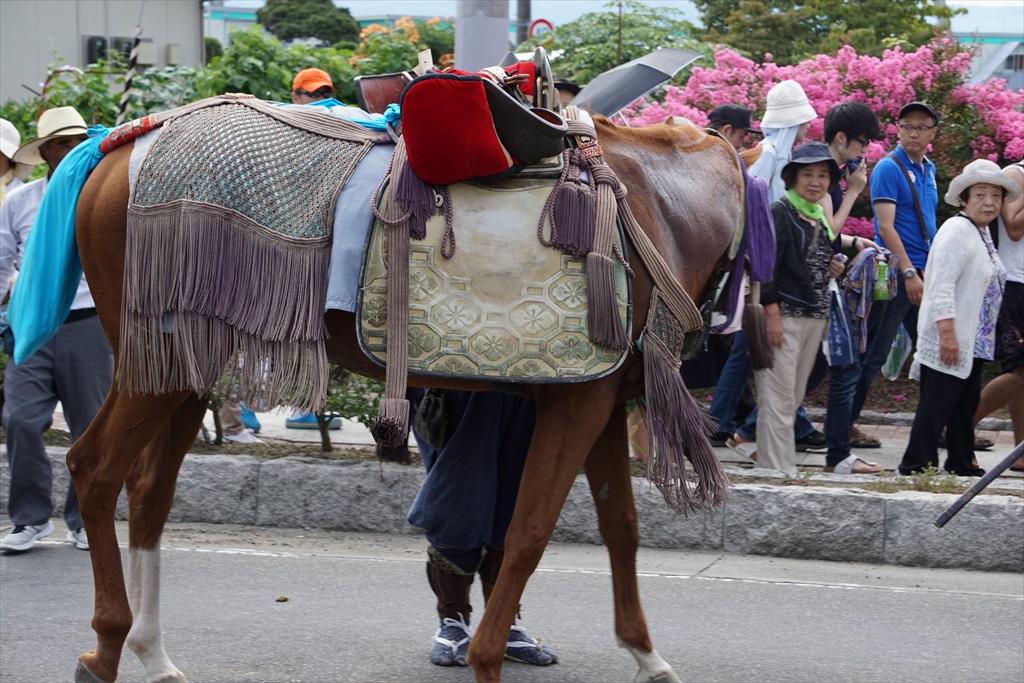馬さんも帰り支度_8