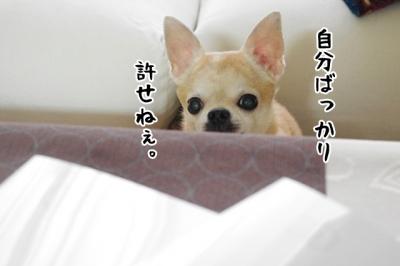 IMGP9210-4.jpg