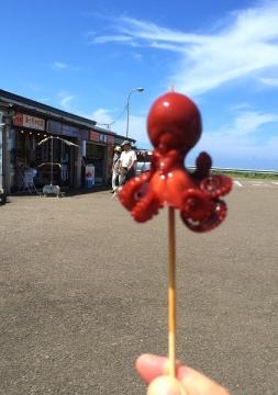 外ヶ浜歩き2- (15)_600