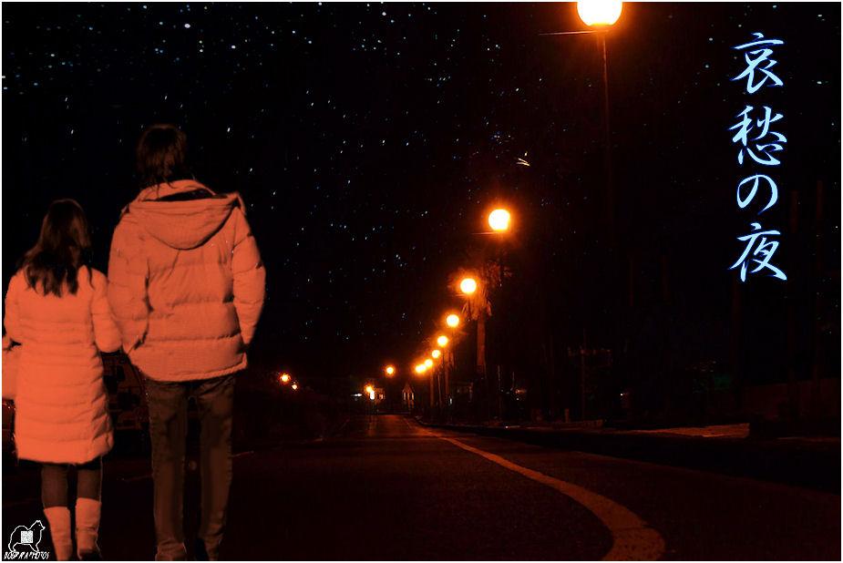 哀愁の夜♪