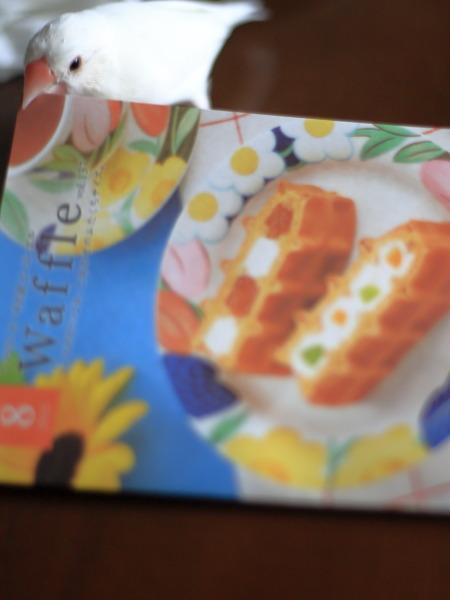 waffuru cake tabemasita (1)
