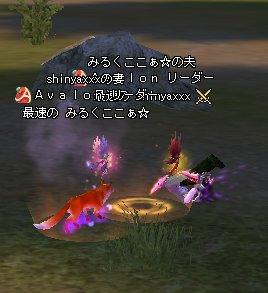 0209_19.jpg