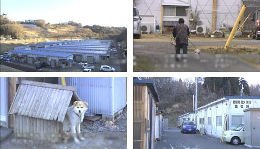 今も避難生活-福島