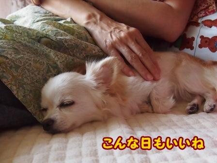 blog6640a.jpg