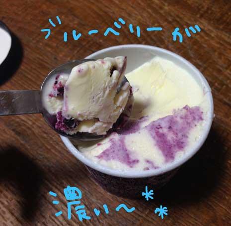 濃厚アイス ブルーベリー2