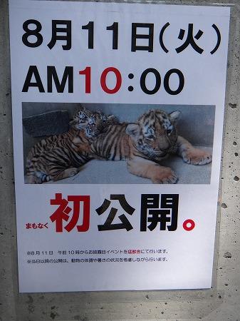 動物園 009