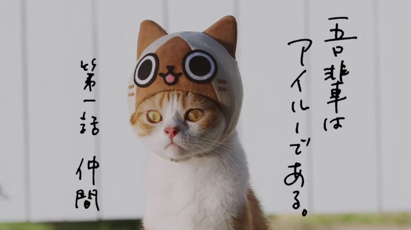 image_2732.jpg