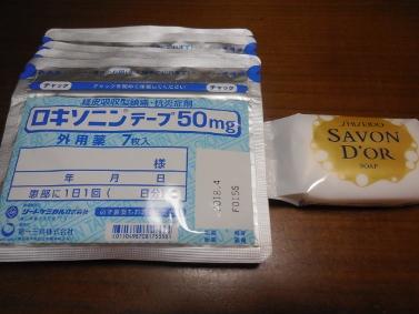 DSCN6040 (377x283)