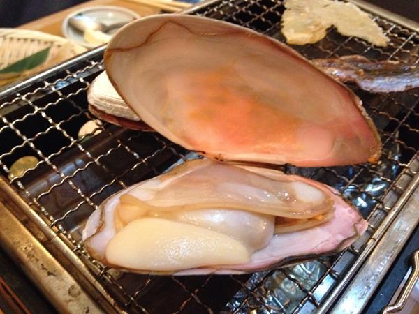 まんじゅう貝