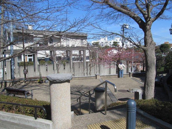20150302kawazu04.jpg