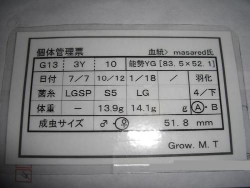 CIMG6600加工済み