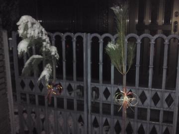 元旦松飾り150101