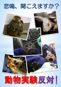 動物実験反対ポスター_254x360