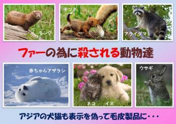 プラ 動物の種類 350