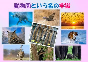 プラ 動物園 350